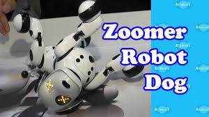 zoomer shadow zoomer robot dog new york toy fair youtube