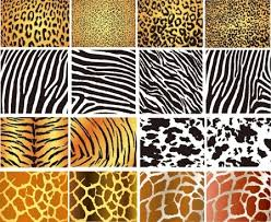 zebra pattern free download zebra texture free vector download 7 411 free vector for