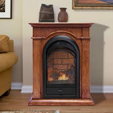 Fireplace With Blower by Gas U0026 Electric Fireplaces Factory Buys Direct
