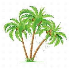 three cartoon coconut palm trees vector image 6835 u2013 rfclipart