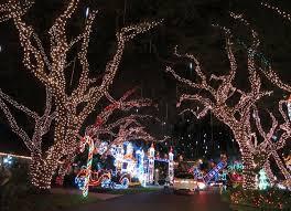 snug harbor christmas lights fun maps