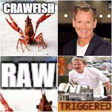 Chef Ramsay Memes - chef ramsay hates raw by baemax meme center