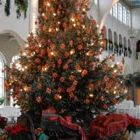 interactive image of decorative deer and santa claus carriage