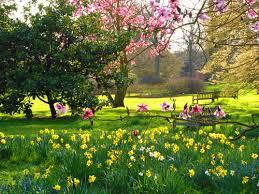 world of garden flowersanglo japanese english garden world of