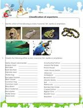 classification of organisms games worksheets for kids