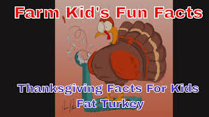 rnraside s farm facts thanksgiving facts turkey