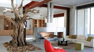 inspiration for a tree house room for the home tree