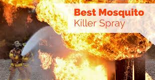 Best Mosquito Killer For Backyard 4 Best Mosquito Killer Spray Pest Survival Guide