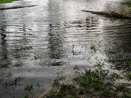 imagenes de paisajes lluviosos fotos uruguay lluvia