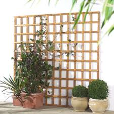 traditional timber square trellis panel h 1 83m w 1 2 m
