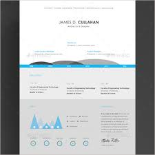 Best Infographic Resumes by Infographic Resume Template Word Pdf Formats Creative Template
