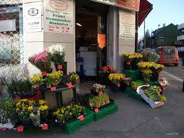 flowers for sale flowers for sale you it s paula m de angelis