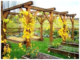free trellis plans grape trellis plans grape arbor image of grape arbor with swing
