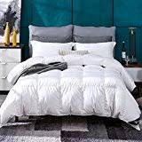 Down Comforter And Duvet Cover Set Amazon Com Down U0026 Feather Fill Duvets Covers U0026 Sets Bedding