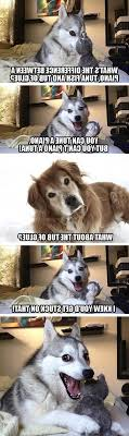 Pun Husky Meme - the best worst jokes from pun husky craveonline regarding dog joke