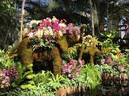 Botanic Garden Bronx by Orchid Covered Thai