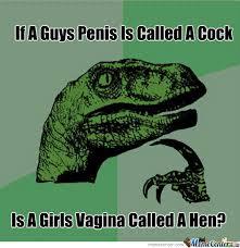 Hen Meme - vagina or hen by djgeden meme center