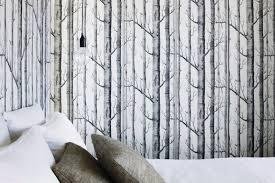 birch tree wallpaper lowes wallpaper simplepict