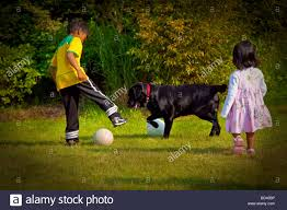 children playing soccer in the backyard with dog netherlands