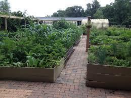 revamped raised bed garden vegetable gardener