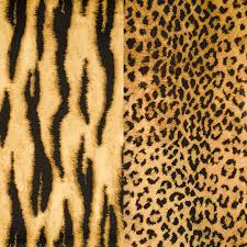 animal print duo roll wrap