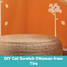 9 diy cat scratcher ideas your cat will love 6 is just awesome