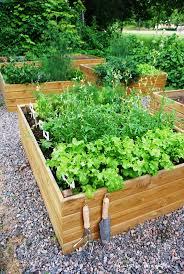 654 best permaculture farming images on pinterest veggie gardens