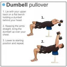 Chest Workout With Dumbbells At Home Without Bench The Best 28 Images Of Chest Workout With Dumbbells Without A Bench