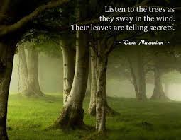 listen to the trees listen to the trees as they sway in the wind