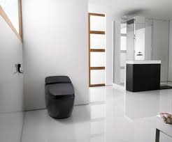 black toilet modern design toilets for your bathroom high tech modern toilet