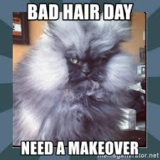 Bad Hair Day Meme - bad hair day need a makeover bad hair day meme generator