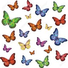 multi colored small and large butterflies on a white background