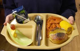 what school lunches look like around the world daily mail