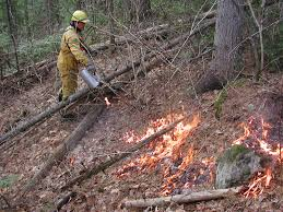 Canadian Wildland Fire Training by Fire Management Science And Conservation