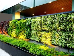 exterior how refreshing with vertical garden in our ecofriendly