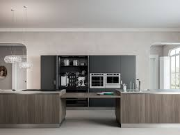 chicago kitchen design contemporary kitchen cabinetry archisesto chicago