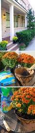 diy fall porch decor mum hanging baskets the home depot diy fall porch decor mum hanging baskets the home depot community