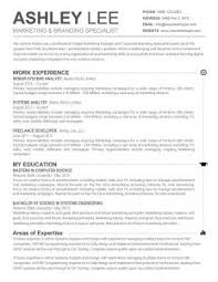 free job resume templates sample resume in ms word format free