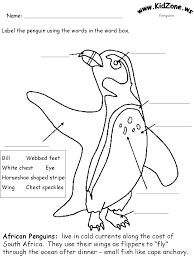 penguin activities label an african penguin beginner