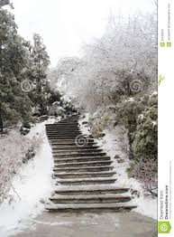 a path at winter time stock photos image 36232633