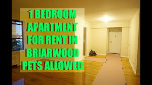 one bedroom apartments pet friendly pet friendly 1 bedroom apartment for rent in briarwood queens