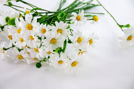 daisy bouquet artificial flowers bouquet of flowers summer flowers