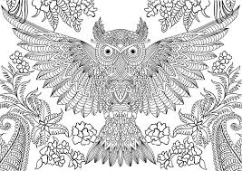 best colouring pages for adults 6831 harvardsalient