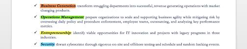 Resume Synopsis Sample by Executive Resume Examples U0026 Writing Tips Ceo Cio Cto Resume