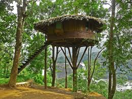 life in a treehouse ecotek green living