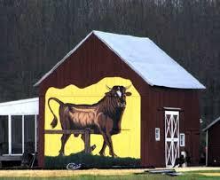 The Bull Hale Barns 519 Best Barn Homes U0026 Barns Images On Pinterest Barn Homes
