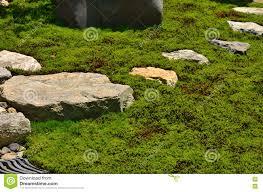pierre pour jardin zen chemin en pierre de jardin japonais kyoto japon photo stock