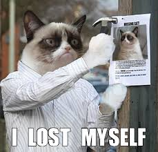 Missing Cat Meme - i lost myself grumpy cat know your meme