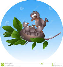 bird and baby birds in a nest stock image image 31731401