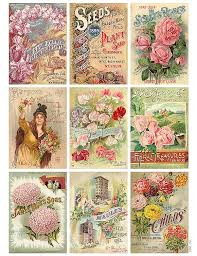 flower seed packets antique flower seed packet collage illustrations creative market